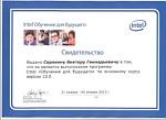 Свидетельство выпускника программы - Intel 10.0